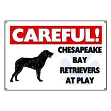 Chesapeake Bay Retrievers At Play Banner