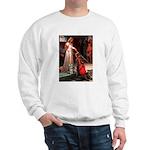 Accolade / Schnauzer (#8) Sweatshirt