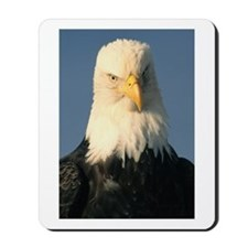 Judgment Eagle Mousepad