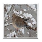 Winter Dove Tile Coaster