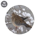 Winter Dove 3.5