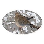 Winter Dove Oval Sticker