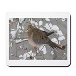 Winter Dove Mousepad