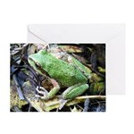 Pacific Chorus Frog Treefrog Greeting Card
