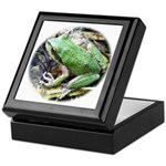 Pacific Chorus Frog Treefrog Keepsake Box
