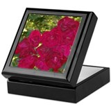 Red Climbing Roses Keepsake Box