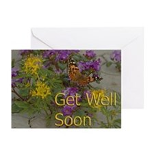 Get Well Desert Flowers Greeting Cards (Pk of 10)