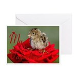 My Valentine Greeting Cards (Pk of 10)