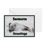 Seasons Greetings Bison Greeting Cards (Pk of 10)