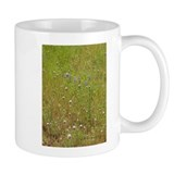 Lupine and Clover Impression Mug