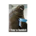 lolrus - i has a bukkit Magnets (10 pack)