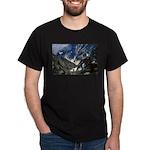 Katahdin's Great Basin Dark T-Shirt