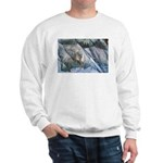 Pockwockamus Rock Sweatshirt