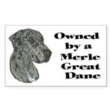 NM Owned Rectangle Bumper Stickers