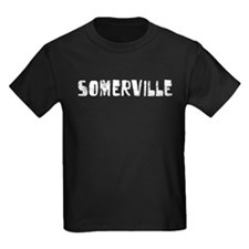 Somerville Faded (Silver) T