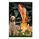 Fairies/ Italian Spinone Postcards (Package of 8)