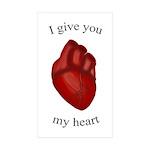 Human Heart Rectangle Sticker 10 pk)