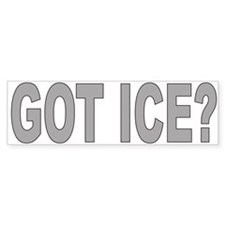 GOT ICE Bumper Bumper Sticker