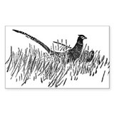 Pheasant Pencil Sketch Rectangle Decal