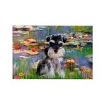 Lilies (#2)/Schnauzer Pup Rectangle Magnet (100 pa
