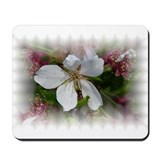 Weeping Cherry Mousepad