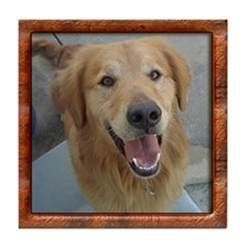 Golden Retriever Tile w/ Virtual Frame