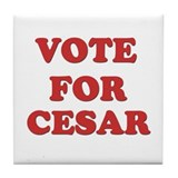Vote for CESAR Tile Coaster