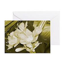 Navy Pier flowers Greeting Card