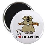 I Love Beavers Magnet