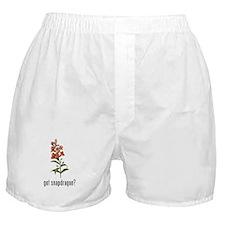 Snapdragon Boxer Shorts