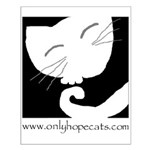 Sleepy Cat Small Poster
