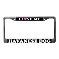 Havanese License Plate Frames