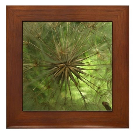 Seed Pod Framed Tile