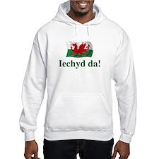 Wales Iechyd da Hoodie