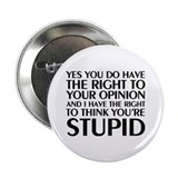 "You're Stupid 2.25"" Button"