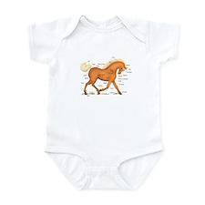 Gold Palomino Horse Anatomy Chart Infant Bodysuit