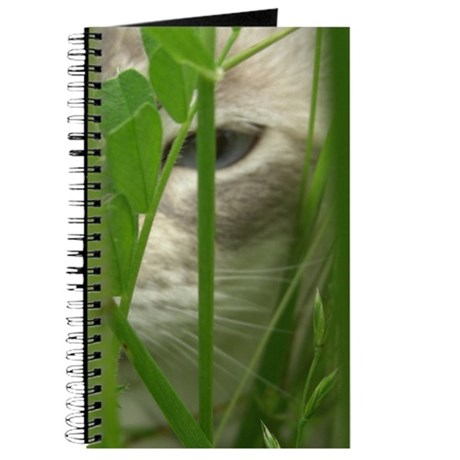 Cat in Grass Journal