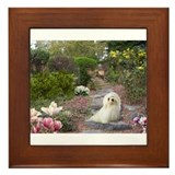 Dreamy Havanese Framed Tile