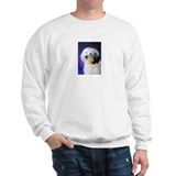 Havanese Champion Rex of Esplendor Sweater