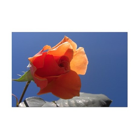 Blue Sky Rose Mini Poster Print