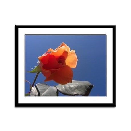 Blue Sky Rose Framed Panel Print