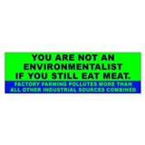 ENVIRONMENTALIST Bumper Bumper Sticker