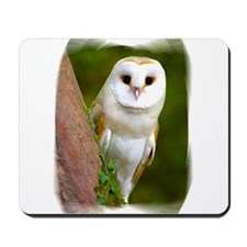 Cute Barn owl Mousepad