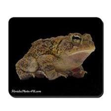 Cool Toads Mousepad