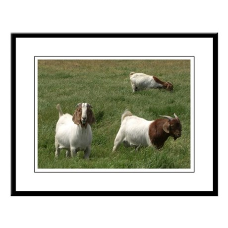 Goats Large Framed Print