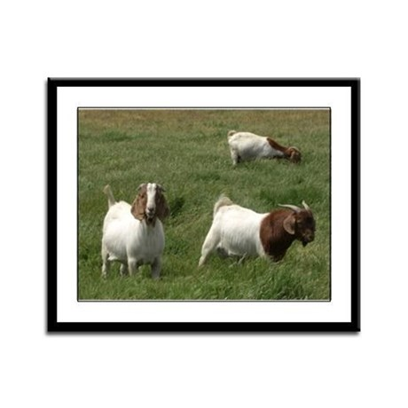 Goats Framed Panel Print