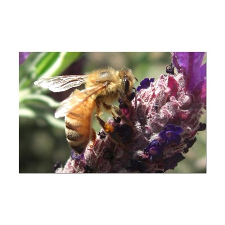 Bee on Flower Mini Poster Print