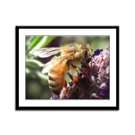 Bee on Flower Framed Panel Print