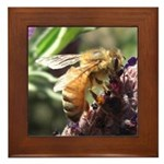 Bee on Flower Framed Tile