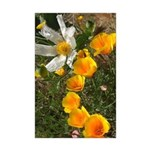 Poppies and White Flower Mini Poster Print
